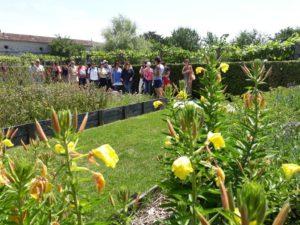 Jardin Haute-Saintonge