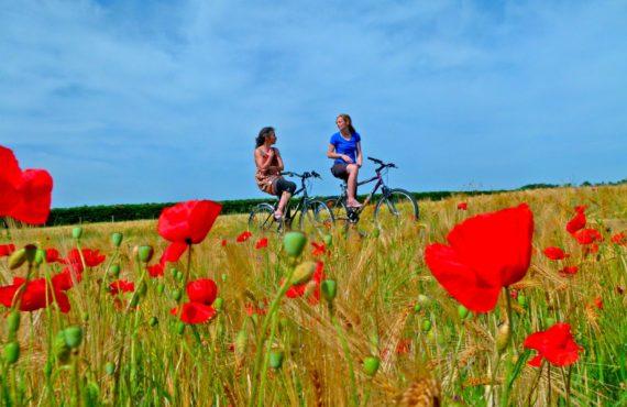 Balades et randonnées à Jonzac et en Haute Saintonge