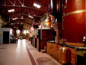Distillerie de Cognac proche de Jonzac