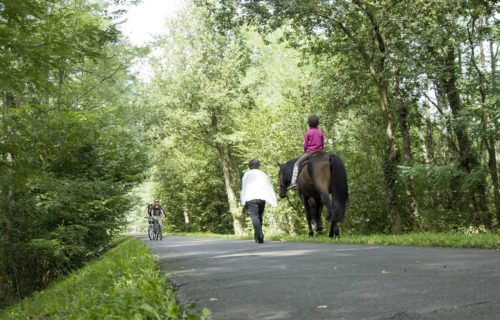 Randonnées équestres Haute-Saintonge
