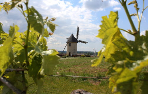 Moulin à vent Haute Saintonge