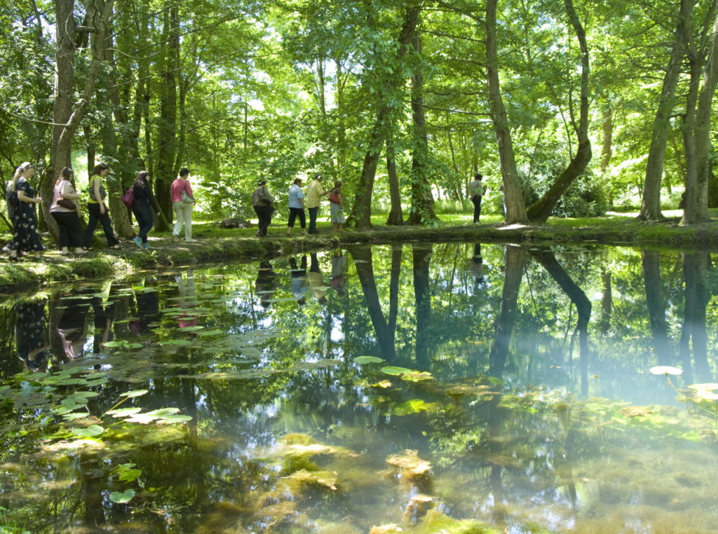 Fontaine Haute-Saintonge